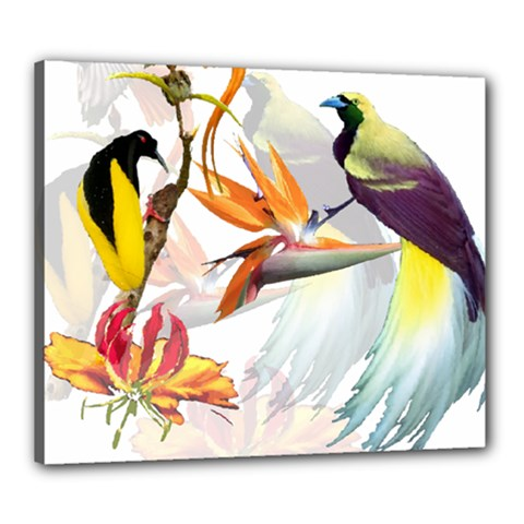 Birds Of Paradise Canvas 24  X 20  by TKKdesignsCo