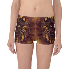 Lion Wild Animal Abstract Boyleg Bikini Bottoms by Celenk