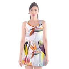 Exotic Birds Of Paradise And Flowers Watercolor Scoop Neck Skater Dress