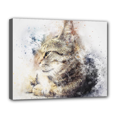 Cat Animal Art Abstract Watercolor Canvas 14  X 11  by Celenk