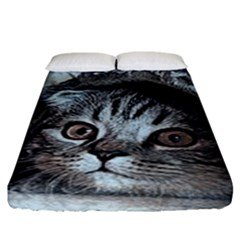 Cat Pet Art Abstract Vintage Fitted Sheet (king Size) by Celenk