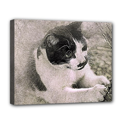 Cat Pet Art Abstract Vintage Deluxe Canvas 20  X 16   by Celenk