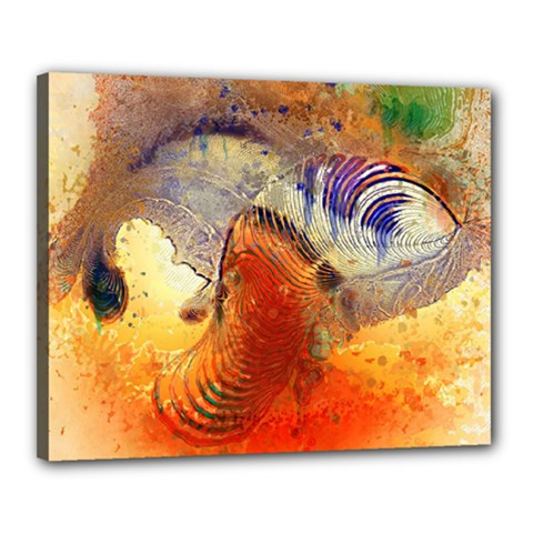 Dirty Dirt Image Spiral Wave Canvas 20  X 16  by Celenk