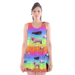 Horses In Rainbow Scoop Neck Skater Dress by CosmicEsoteric