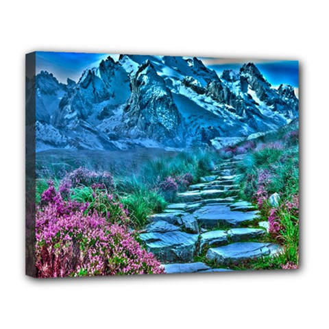Pathway Nature Landscape Outdoor Canvas 14  X 11  by Celenk