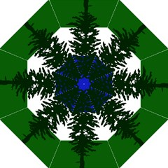 Flag Of Cascadia Straight Umbrellas by abbeyz71