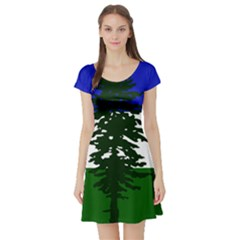 Flag Of Cascadia Short Sleeve Skater Dress