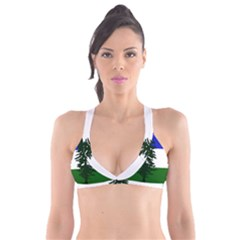 Flag Of Cascadia Plunge Bikini Top by abbeyz71