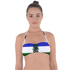 Flag Of Cascadia Halter Bandeau Bikini Top by abbeyz71