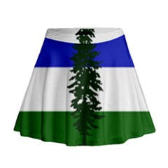 Flag Of Cascadia Mini Flare Skirt