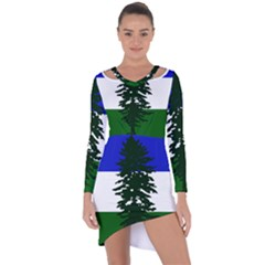 Flag Of Cascadia Asymmetric Cut Out Shift Dress