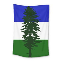 Flag Of Cascadia Small Tapestry by abbeyz71