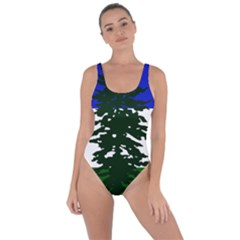 Flag Of Cascadia Bring Sexy Back Swimsuit by abbeyz71