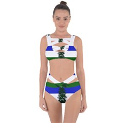 Flag Of Cascadia Bandaged Up Bikini Set