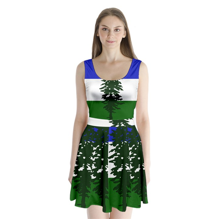 Flag of Cascadia Split Back Mini Dress