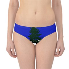 Flag Of Cascadia Hipster Bikini Bottoms by abbeyz71