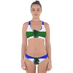 Flag Of Cascadia Cross Back Hipster Bikini Set