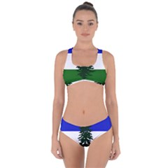 Flag Of Cascadia Criss Cross Bikini Set by abbeyz71