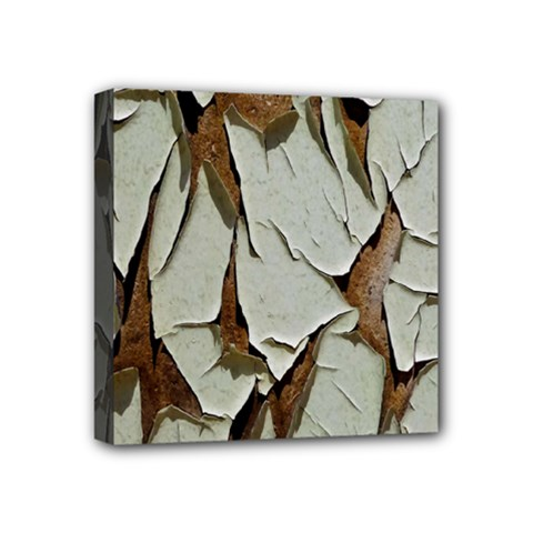 Dry Nature Pattern Background Mini Canvas 4  X 4