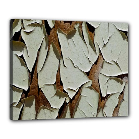 Dry Nature Pattern Background Canvas 20  X 16
