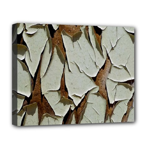 Dry Nature Pattern Background Deluxe Canvas 20  X 16