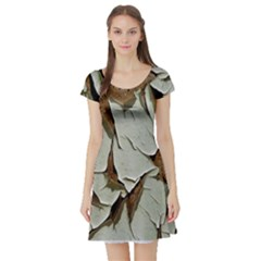 Dry Nature Pattern Background Short Sleeve Skater Dress