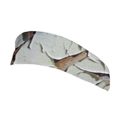 Dry Nature Pattern Background Stretchable Headband