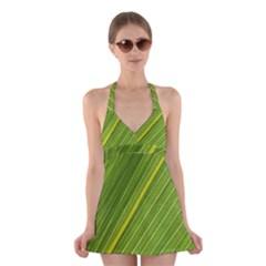 Leaf Plant Nature Pattern Halter Dress Swimsuit  by Nexatart