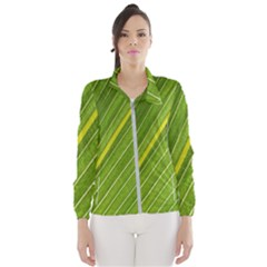 Leaf Plant Nature Pattern Wind Breaker (women)