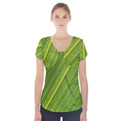 Leaf Plant Nature Pattern Short Sleeve Front Detail Top