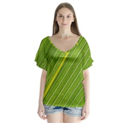 Leaf Plant Nature Pattern V Neck Flutter Sleeve Top