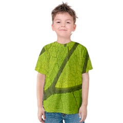 Green Leaf Plant Nature Structure Kids  Cotton Tee