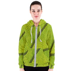 Green Leaf Plant Nature Structure Women s Zipper Hoodie