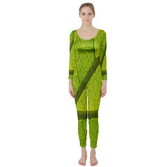 Green Leaf Plant Nature Structure Long Sleeve Catsuit