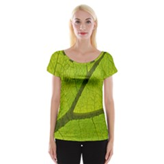 Green Leaf Plant Nature Structure Cap Sleeve Tops