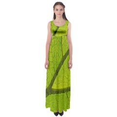 Green Leaf Plant Nature Structure Empire Waist Maxi Dress