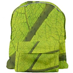 Green Leaf Plant Nature Structure Giant Full Print Backpack