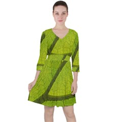 Green Leaf Plant Nature Structure Ruffle Dress