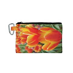 20180115 144714 Hdr Canvas Cosmetic Bag (small)