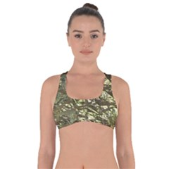 Seamless Repeat Repetitive Got No Strings Sports Bra