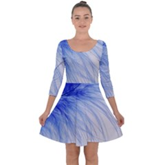Feather Blue Colored Quarter Sleeve Skater Dress