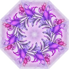 Flowers Flower Purple Flower Folding Umbrellas