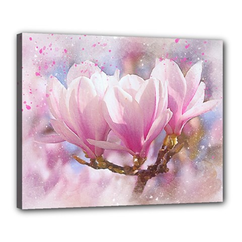 Flowers Magnolia Art Abstract Canvas 20  X 16