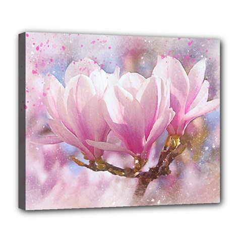 Flowers Magnolia Art Abstract Deluxe Canvas 24  X 20