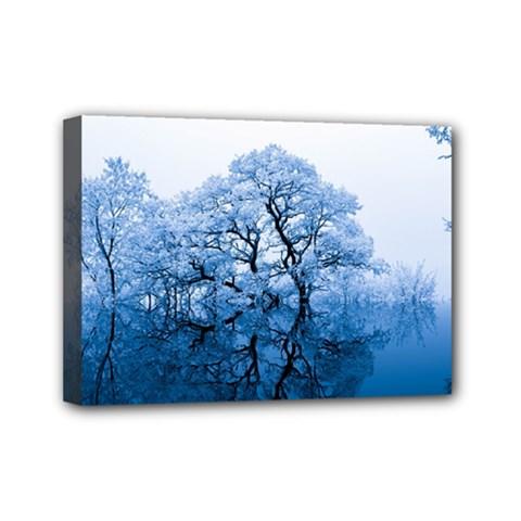 Nature Inspiration Trees Blue Mini Canvas 7  X 5