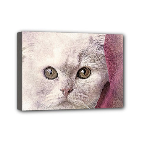 Cat Pet Cute Art Abstract Vintage Mini Canvas 7  X 5