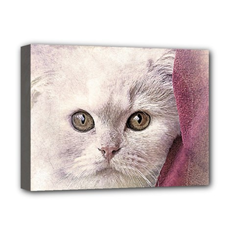 Cat Pet Cute Art Abstract Vintage Deluxe Canvas 16  X 12