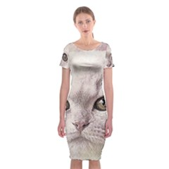 Cat Pet Cute Art Abstract Vintage Classic Short Sleeve Midi Dress