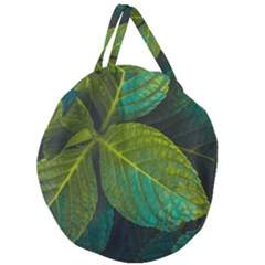 Green Plant Leaf Foliage Nature Giant Round Zipper Tote by Nexatart