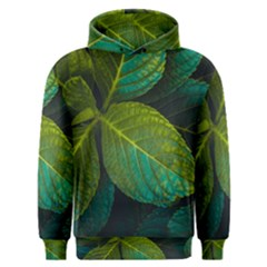 Green Plant Leaf Foliage Nature Men s Overhead Hoodie